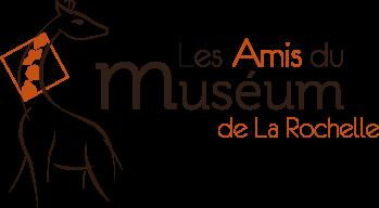 amis-museum-lr