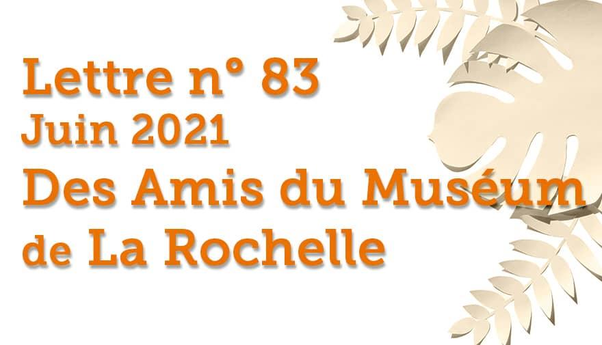 Lettre n° 83 Juin 2021 Des Amis du Muséum de La Rochelle